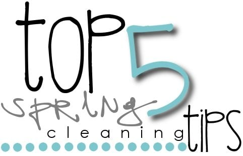 Printable Cleaning List