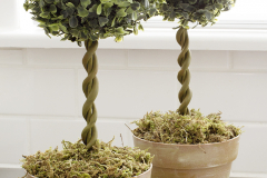 diy-topiary-trees-in-bamboo-pots-made-to-look-like-terra-cotta