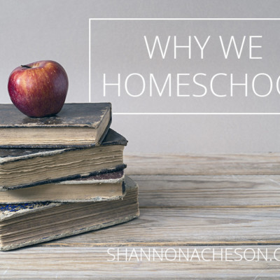 Why We Homeschool and How We Made the Decision to Begin With