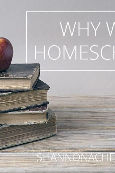 Why-we-homeschool
