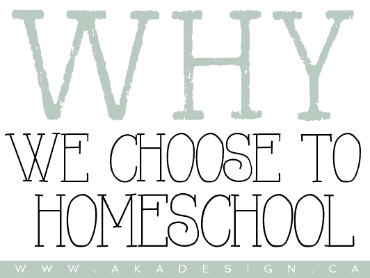 why we choose to homeschool