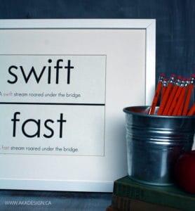 SWIFT FAST VOCABULARY CARD ART