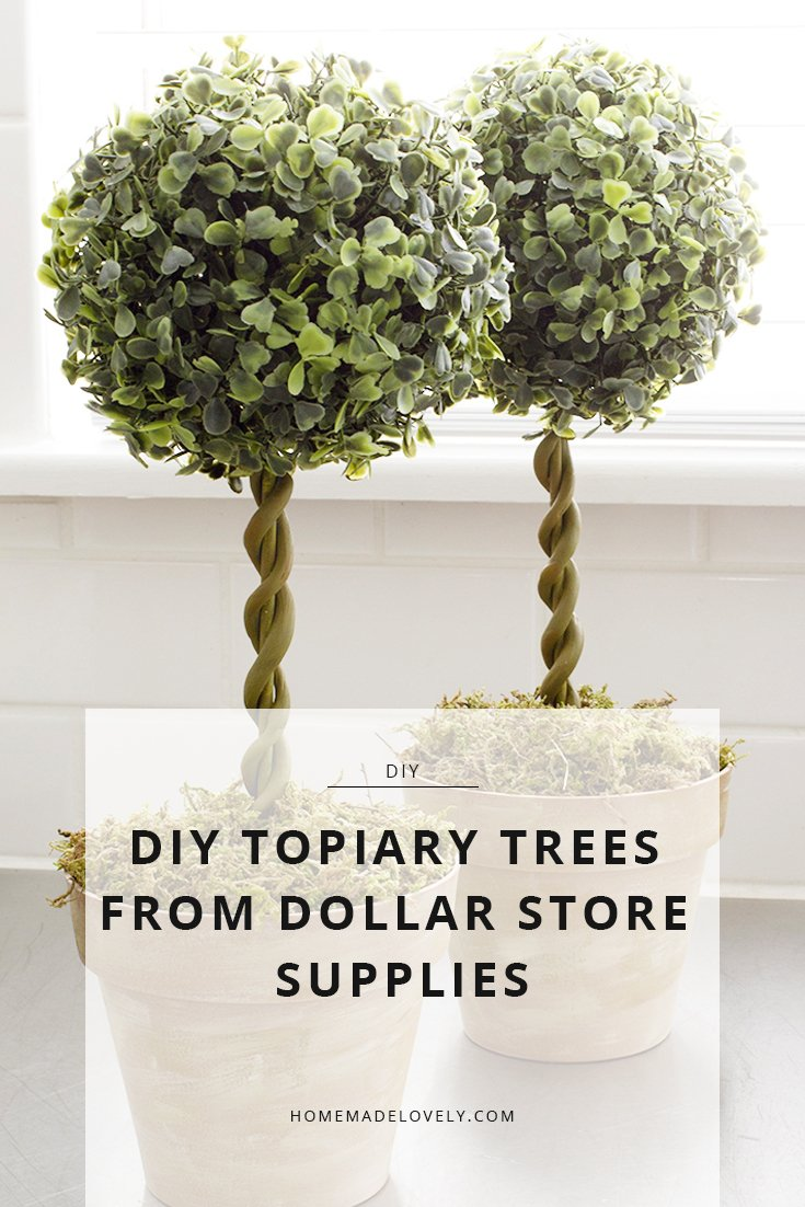 Here S A Way To Make Diy Topiary Trees From Dollar Store Supplies