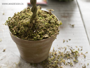 add moss to diy topiary