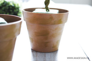 aging bamboo pots like terra cotta pots