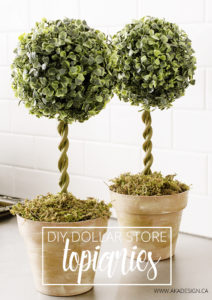 diy dollar store topiaries