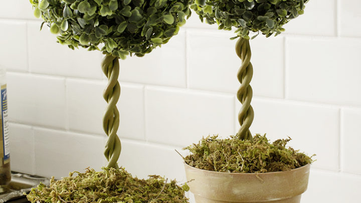 Diy Topiary Trees From Dollar Supplies