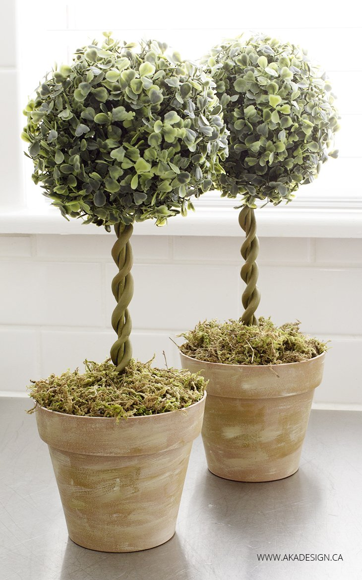 Topiary do it yourself 73