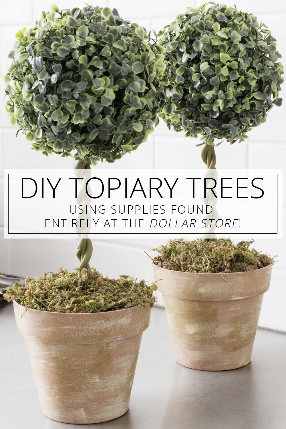 WAY Cheaper than the ones at Pier 1 or other stores! DIY Dollar Store Topiary Trees via @akadesigndota