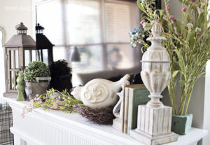 Spring Fireplace mantel 2