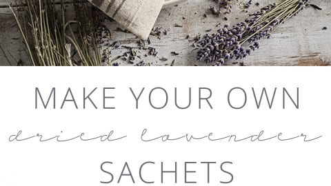 Make Your Own Dried Lavender Sachets – the Easy Way!
