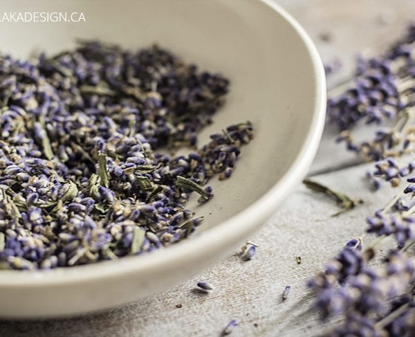 dried lavender in a bowl