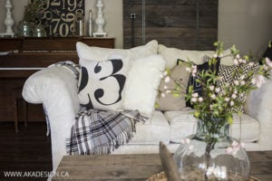 throw pillows and plaid blanket