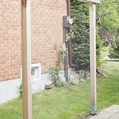 Updating the Vertical Garden | It's Not Pretty…Yet