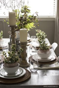 Natural Accents Table Setting