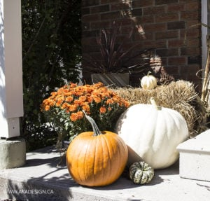 AKA Design Fall Porch Pumpkins