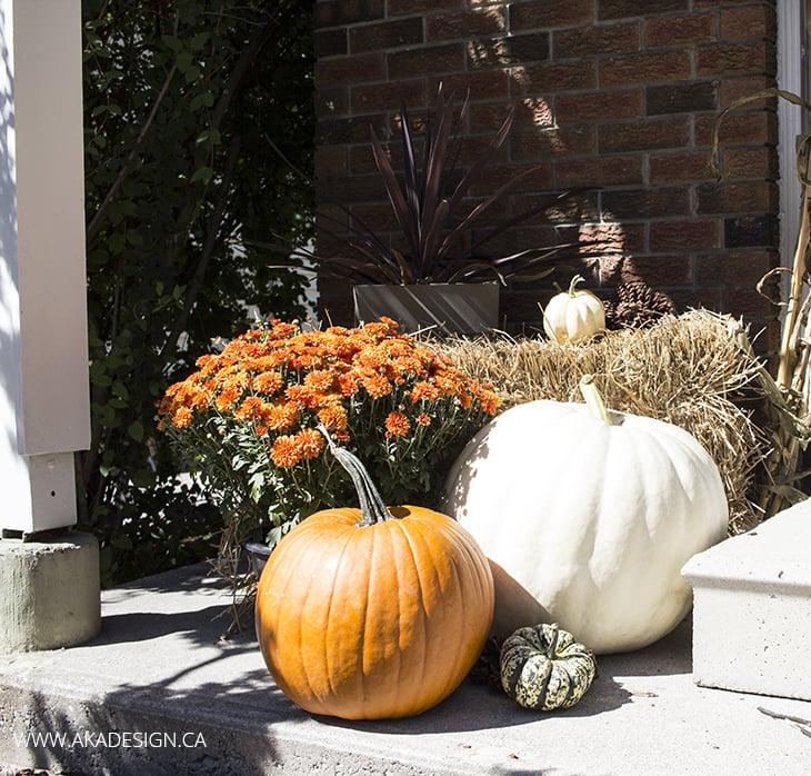 AKA Design Fall Porch Pumpkins