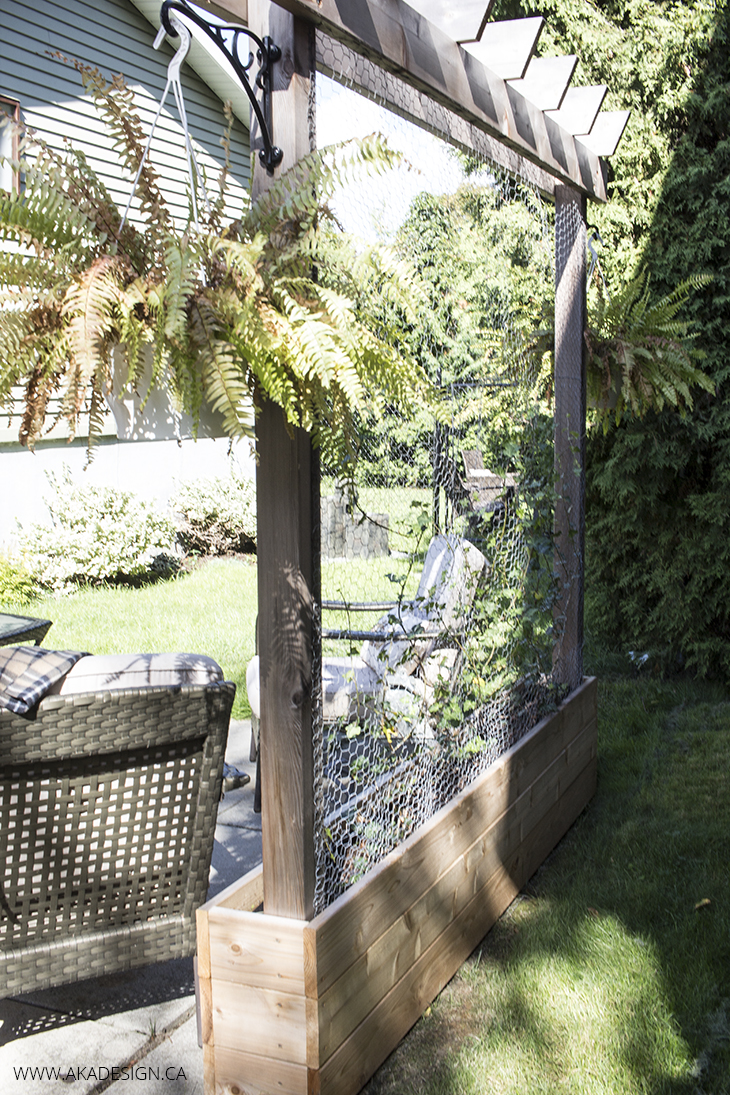 Raised garden with trellis AKA Design