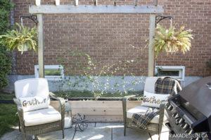 Vertical Garden with Raised Cedar Box