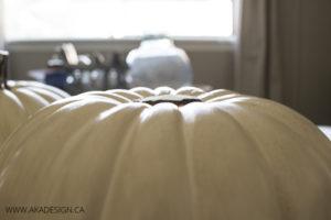 pumpkin no stem