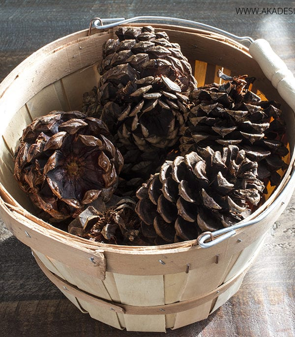 Make Your Own Cinnamon Scented Pine Cones
