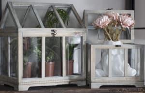 Wayfair Greenhouses
