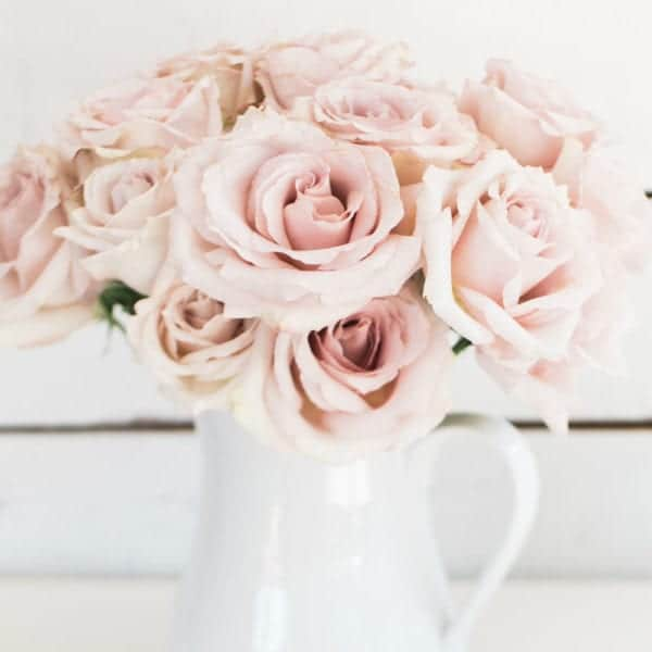 blogging advice, pink flowers in a white pitcher