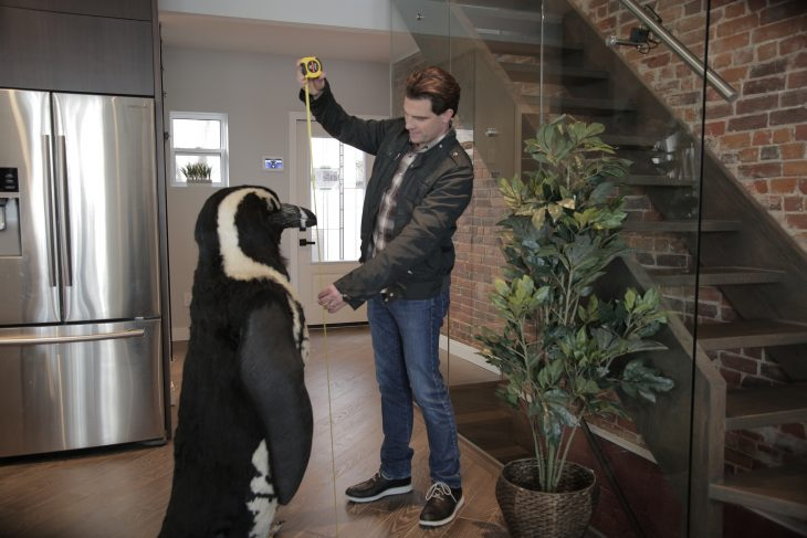 Scott McGillivray and a Penguin