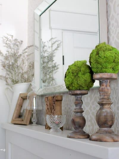 DIY Moss Topiary Balls | How to Make a Topiary
