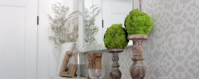 DIY Moss Topiary Balls