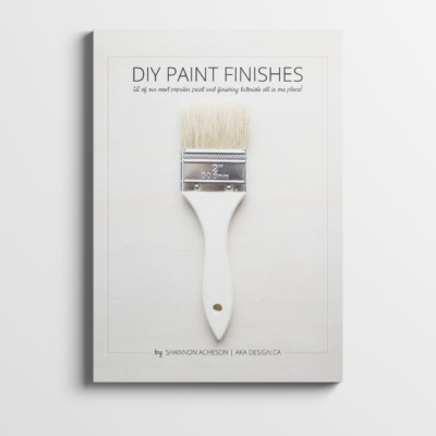 DIY Paint Finishes Mockup