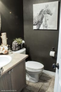 bathroom makeover2