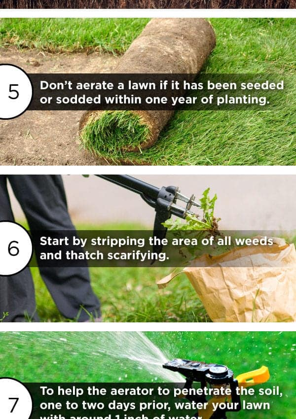 4 Tips to Get Your Yard Ready for Spring