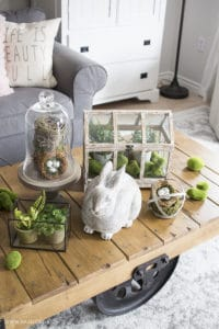 greenhouse, faux plants, cement bunny, glass cloche