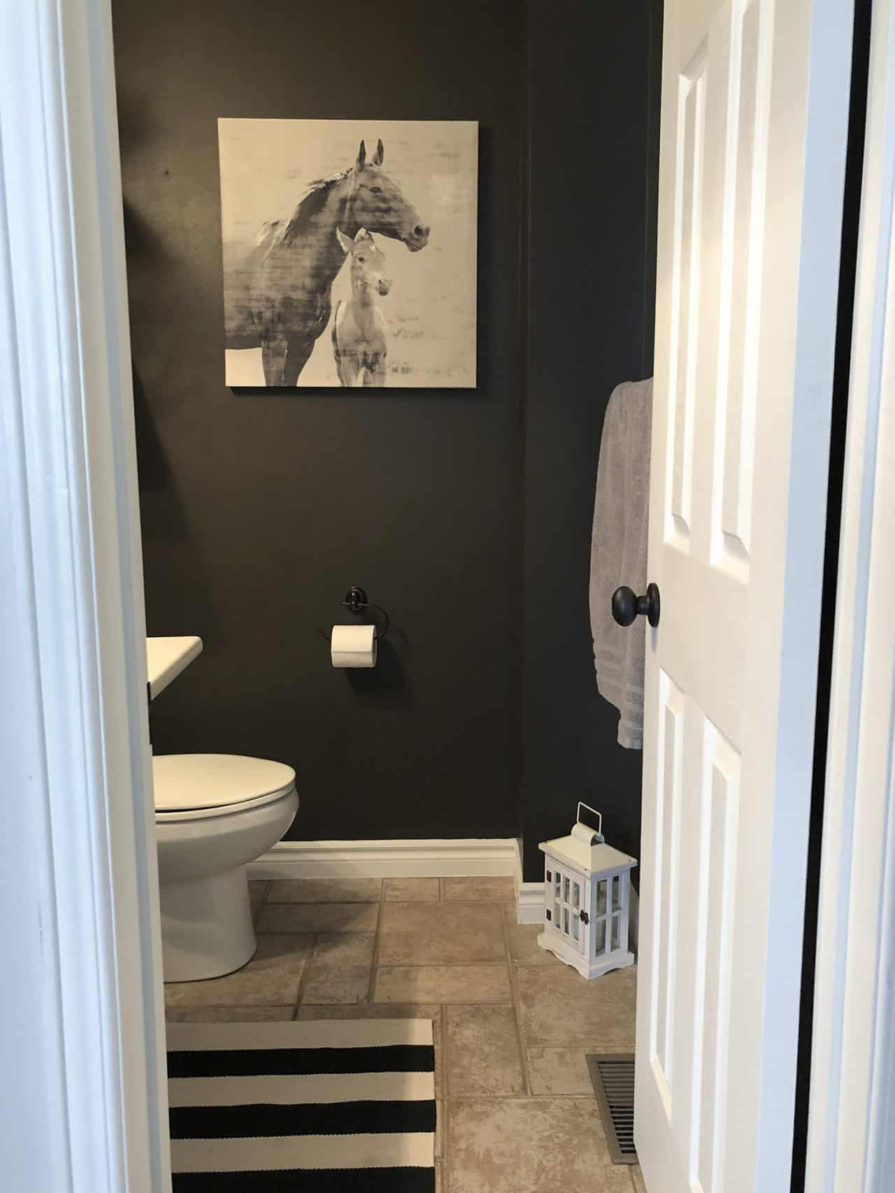 black powder room horse canvas
