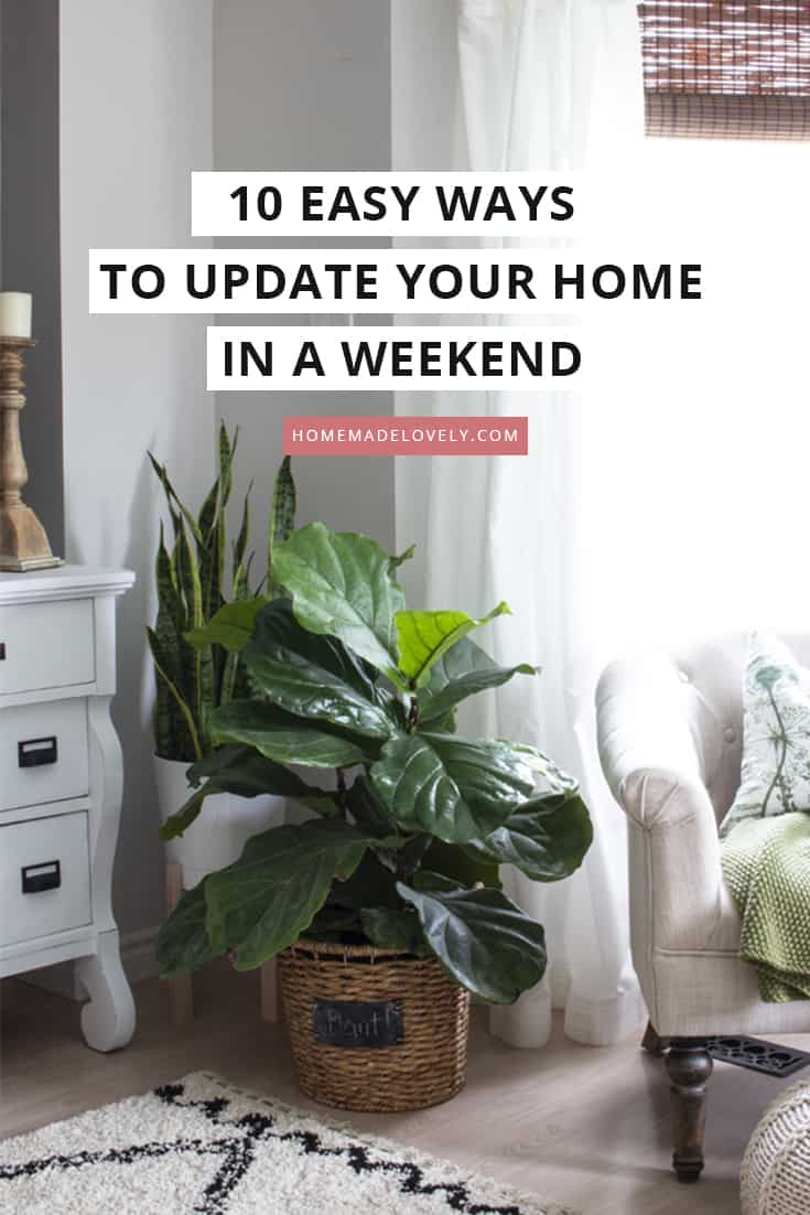 easy home updates - add plants
