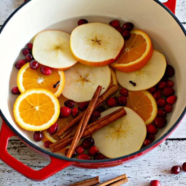 Homemade Simmering Potpourri