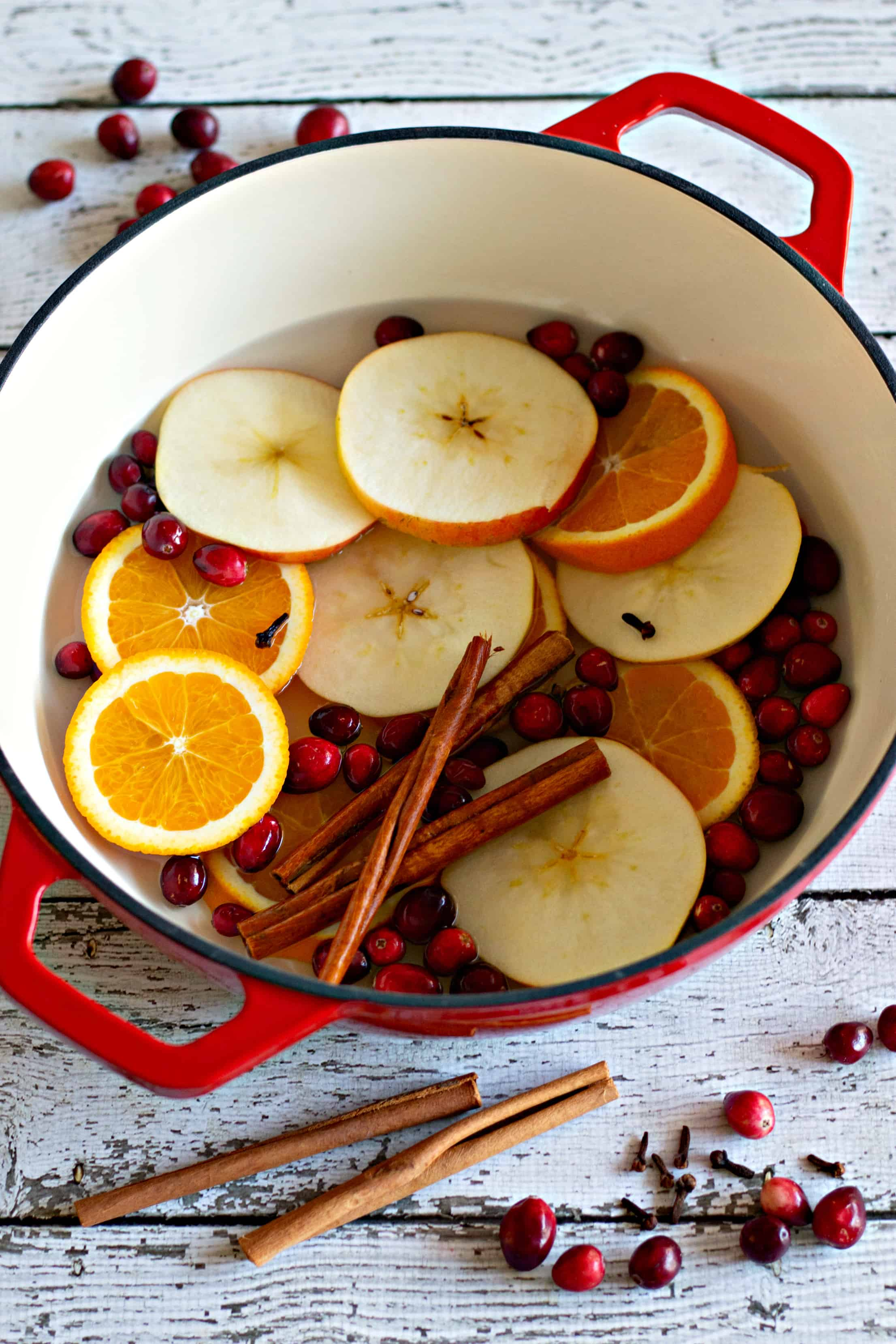 16 Simmer Pot Recipes for All Seasons – Homemade Simmering Potpourri