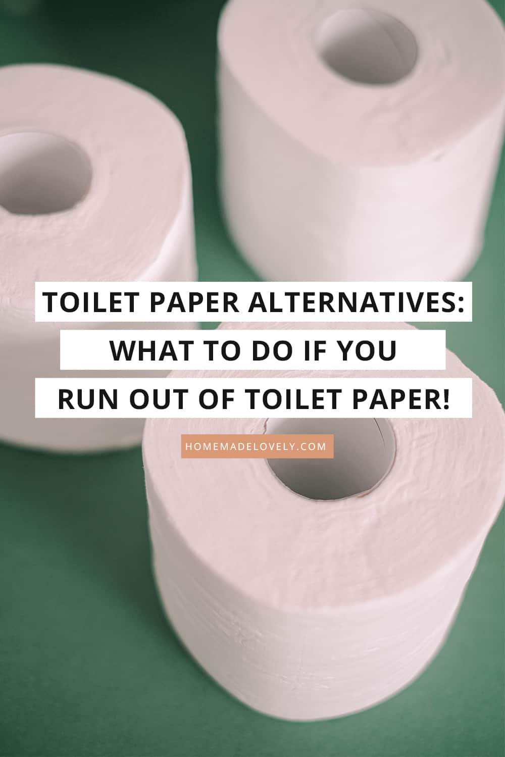 "toilet paper on green background with text overlay that says "" toilet paper alternatives"""