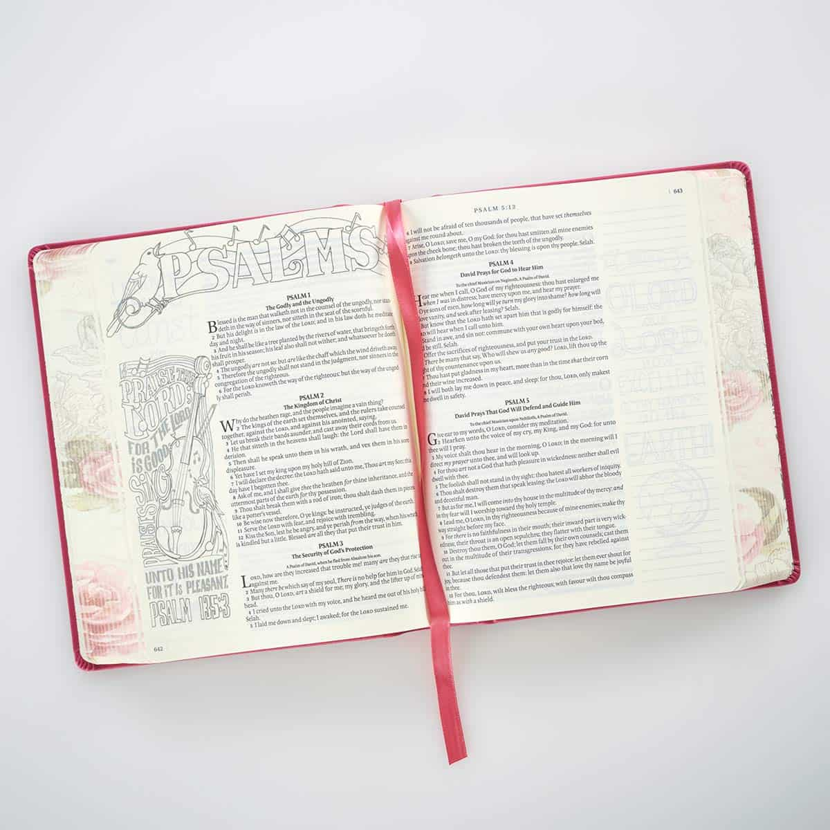 illustrated journaling bible