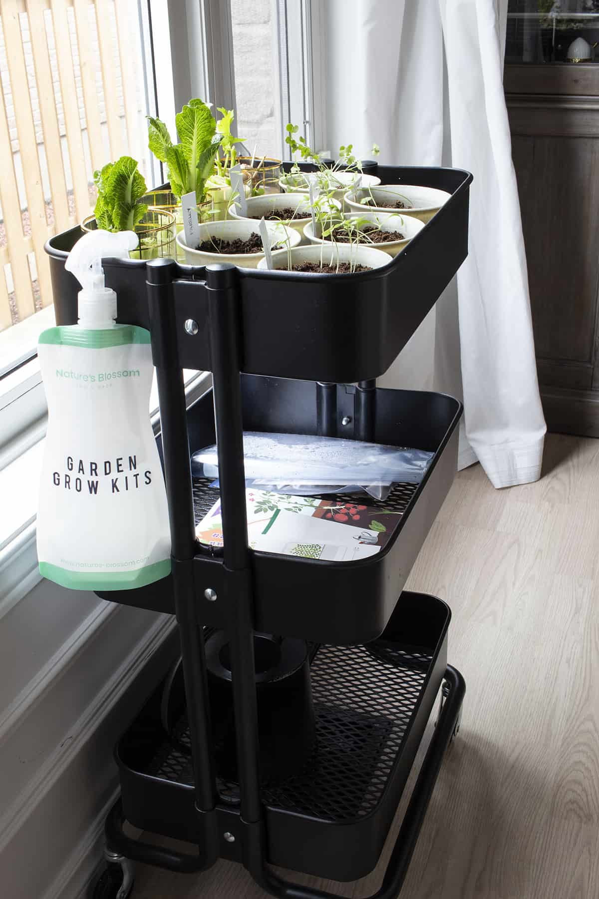 rolling cart for plants near window