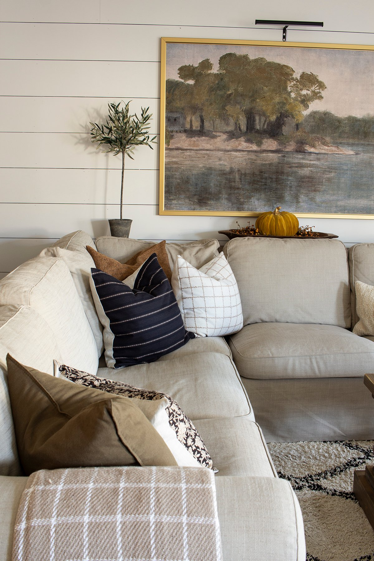 living room with coordinating pillows
